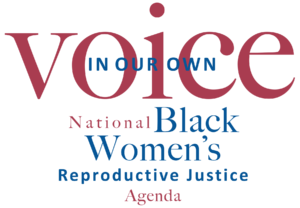 In Our Own Voice: National Back Women's Reproductive Justice Agenda